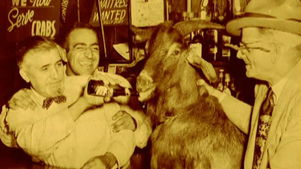 The Billy Goat curse started with the 1945 World Series at Wrigley Field. Wrigley officials kicked Billy and his goat out of the stadium, prompting Billy to place a curse on the Cubs.