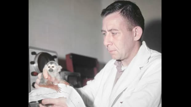 On May 28, 1959, in an experiment that would lead the way to manned space flight, the United States launched two monkeys to an altitude of 300 miles. A Voice of America news report details the travels of the two primates who survived the space flight and were the first in history to return safely to Earth.