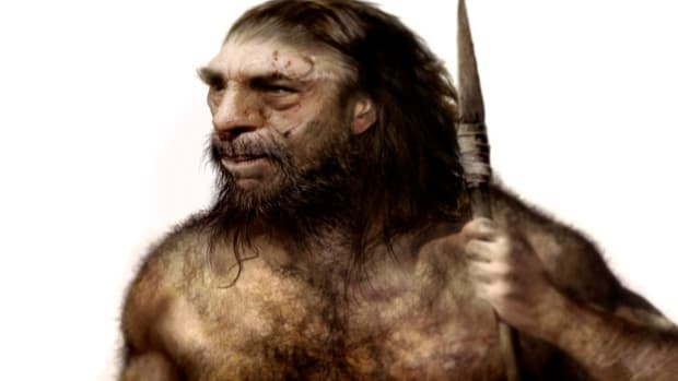 If Bigfoot exists, is it actually a form of primitive early human still surviving on Earth?