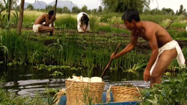 Chinampas were a marvel of engineering that allowed the Aztecs to literally create new farming land where there was none before.