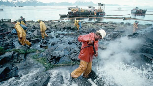 On March 24, 1989, the oil tanker Exxon Valdez ran aground on an undersea reef, spilling an estimated 11 million gallons of crude oil into Alaska's Prince William Sound. Twenty years later, the National Oceanic and Atmospheric Administration, which was involved in the initial cleanup, reports on the area's recovery.