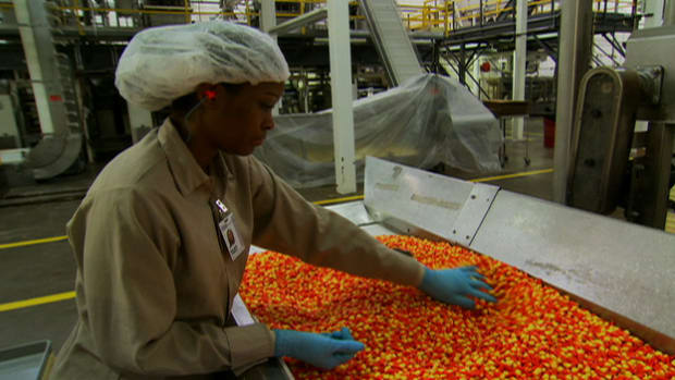 Modern Marvels gets a firsthand look at how Halloween's iconic candy corn is made.
