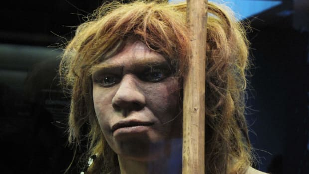 hith-study-suggests-neanderthals-humans-coexisted-for-millenia-498346065-2