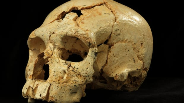 hith-oldest-murder-victim-2