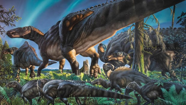 Why Did the Dinosaurs Die Out? - Causes & Dates - HISTORY