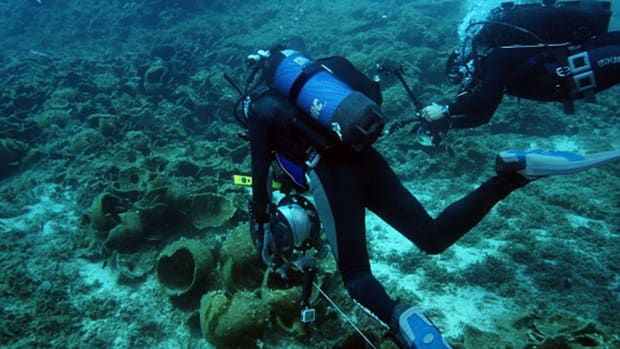 hith-greek-shipwrecks-diver-2