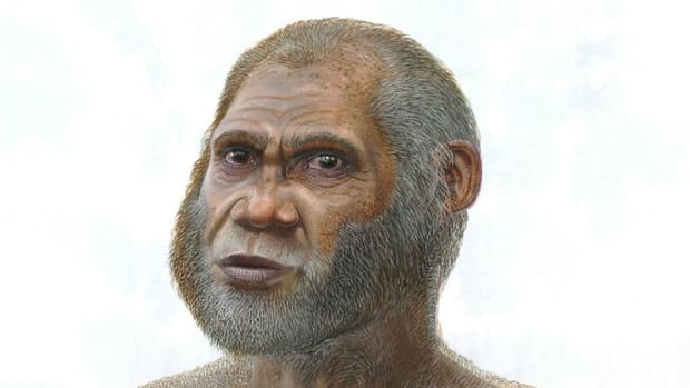 hith-new-human-species-china-2