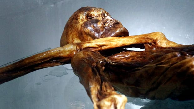 otzi_the_iceman_hith_hero-2
