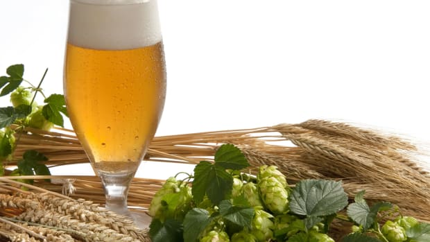 hungry-history-the-hoppy-history-of-beer-2