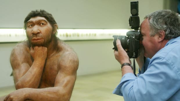 hith-neanderthal-make-clothes-71536091-2