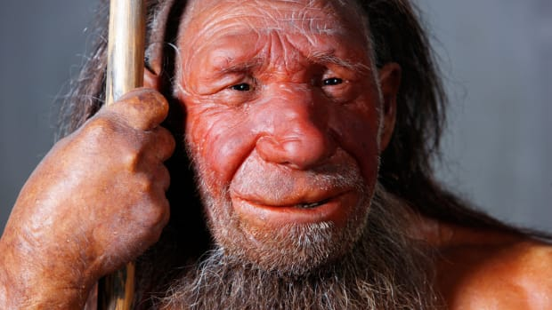hith-neanderthal-die-out-earlier-2