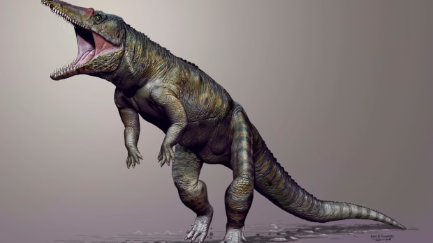 hith-triassic-creatures-carnufex_carolinensis_sk_150323_16x9_992-2