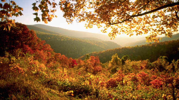Shenandoah National Park, Virginia, USA — Autumn in Shenandoah National Park — Image by © Jay Dickman/CORBIS
