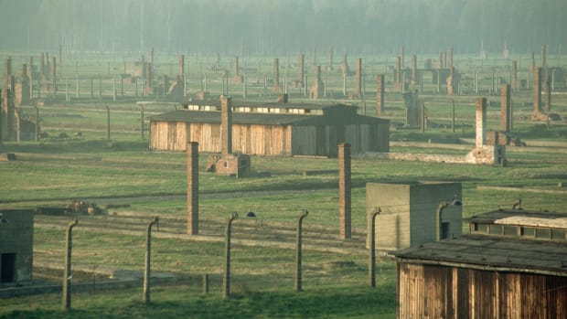 buildings-and-chimneys-at-auschwitz-birkenau
