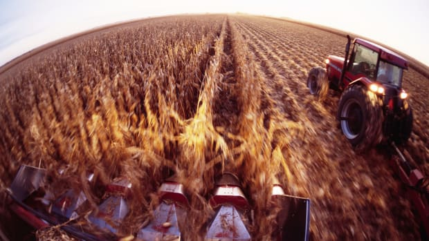 ca. 1990s, Nebraska, USA — Corn Harvesting — Image by © Jim Richardson/CORBIS