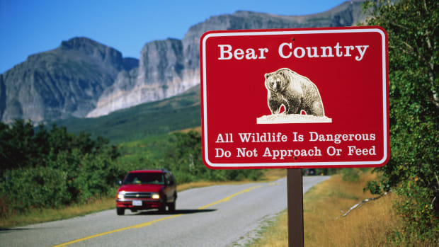 "Glacier National Park, Montana, USA — ""Bear Country"" Sign — Image by © Carl & Ann Purcell/CORBIS"