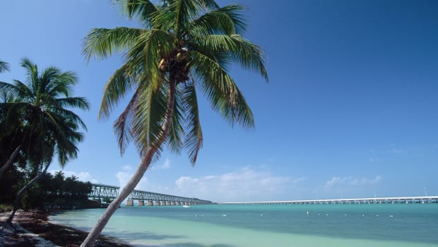 ca. 1990s, Bahia Honda State Park, Florida Keys, Florida, USA — A palm trees leans out over the water on the shores of Bahia Honda State Park. Florida Keys, Florida, USA. — Image by © Douglas Peebles/CORBIS