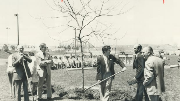 arbor-day-in-mississauga-mayor-martin-dobkin-plants-a-sunburst-loust-tree-in-front-of-city-hall-yes