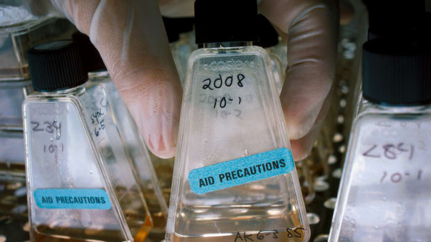 vials-of-aids-virus-in-laboratory-of-anthony-fauchi-national-institutes-of-health