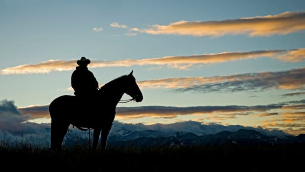 Cowboy silhouette at dawn. Background sky and mountain range