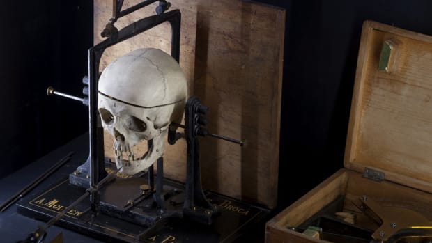 Equipment to measure skulls in the Cesare Lombroso Museum