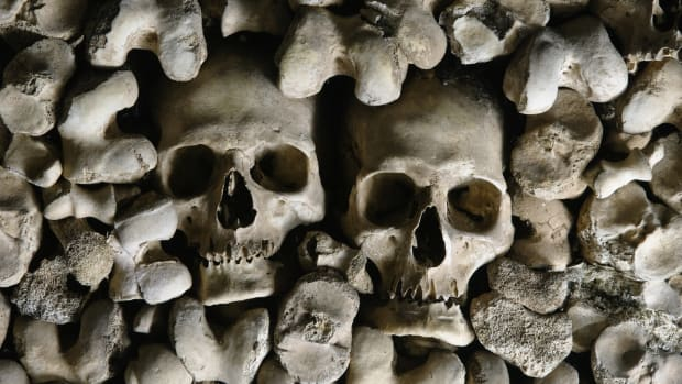 Medieval 'Black Death' Was Airborne, Scientists Say