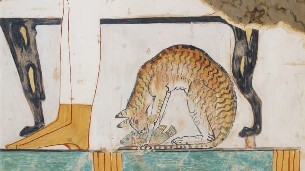 Copy of wall painting from private tomb 52 of Nakht, Thebes (I, 1, 99-102) cat eating fish, 20th century.