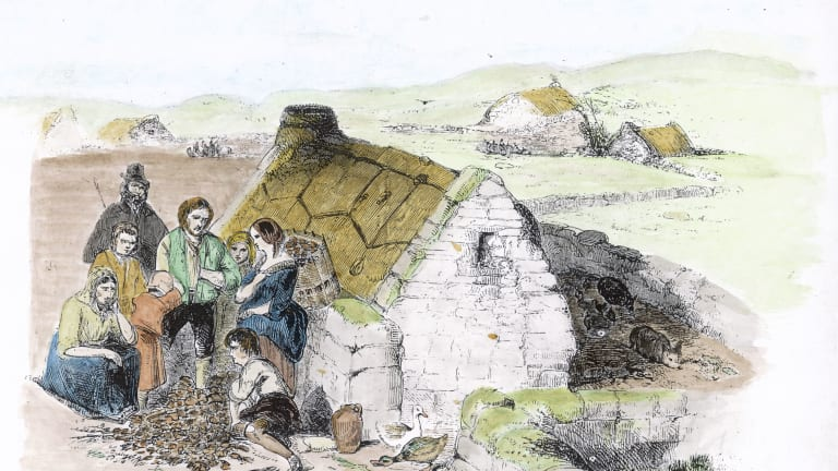 Irish Potato Famine History
