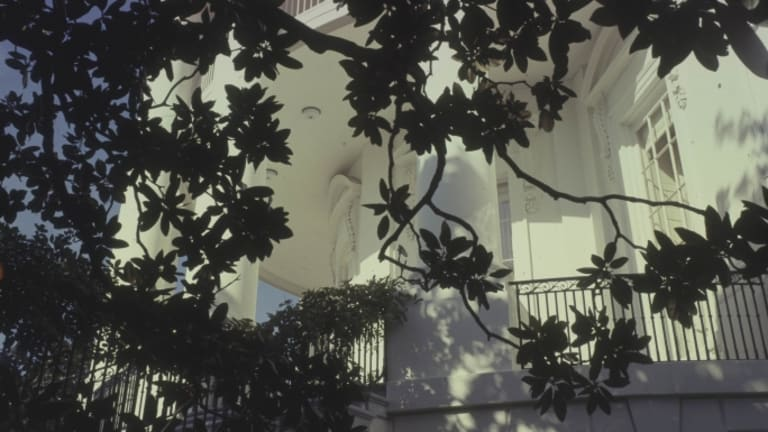 The White House is Taking Down the Iconic Jackson Magnolia