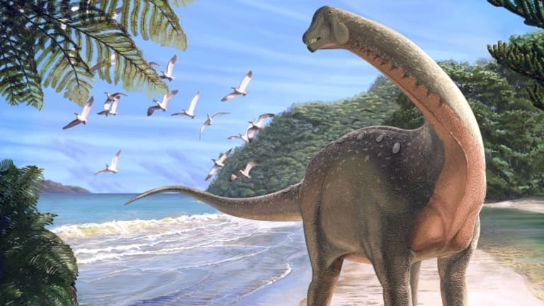 The 'Holy Grail' of Dinosaurs Discovered in the Sahara