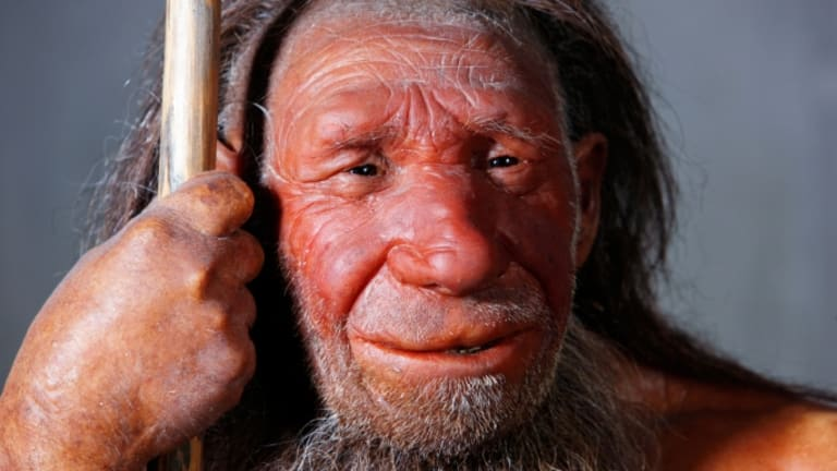 Did Neanderthals Die Out Much Earlier Than We Thought?