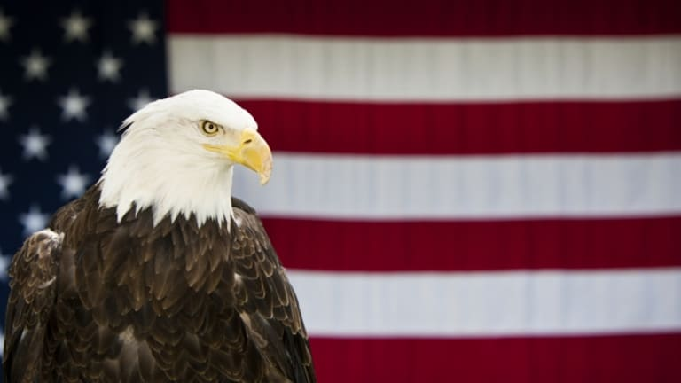 How Did The Bald Eagle Become Americas National Bird History
