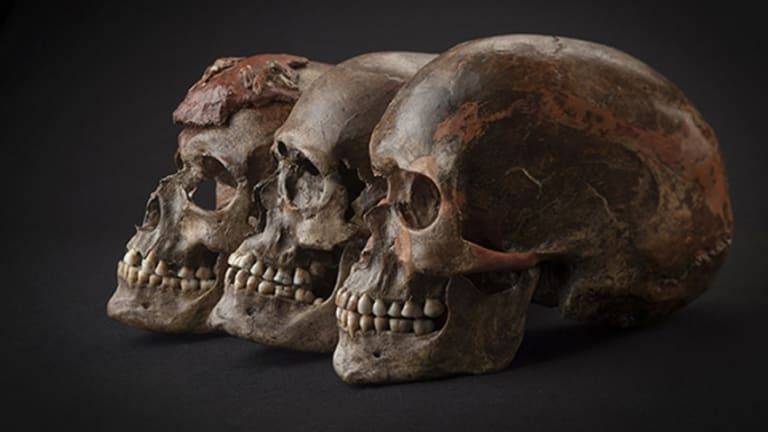 New DNA Research Sheds New Light on Ice Age Europe