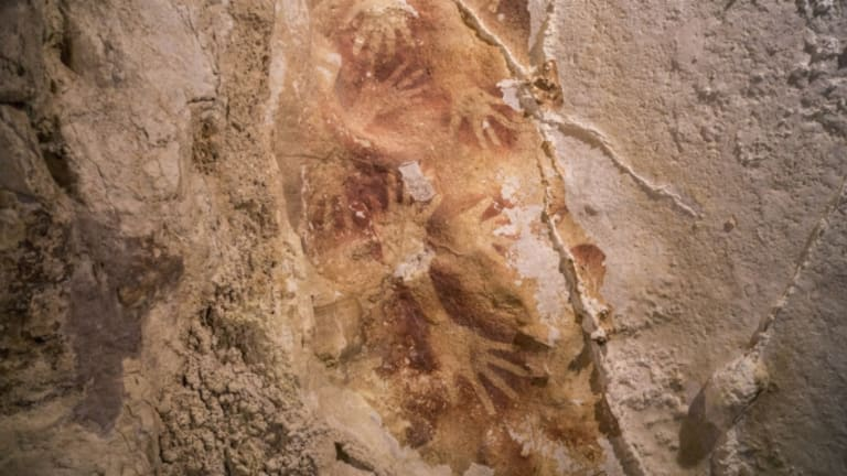 Indonesian Cave Paintings May Be Among World's Oldest Art