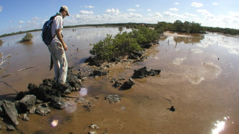 Researchers Explore the Seafaring Culture of the Maya
