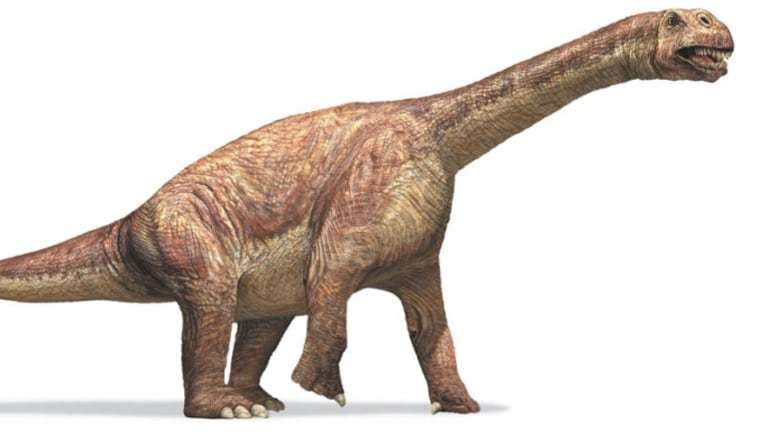 Dino Temperature Puzzle: Scientists Get Warmer