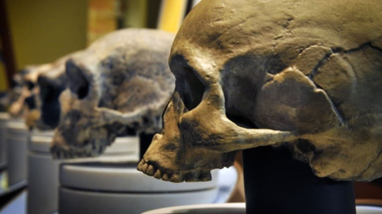 We May Not Be Part Neanderthal After All