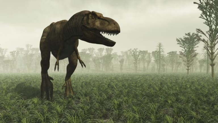 The Biggest Losers: Dinosaurs Slim Down With Lasers - HISTORY
