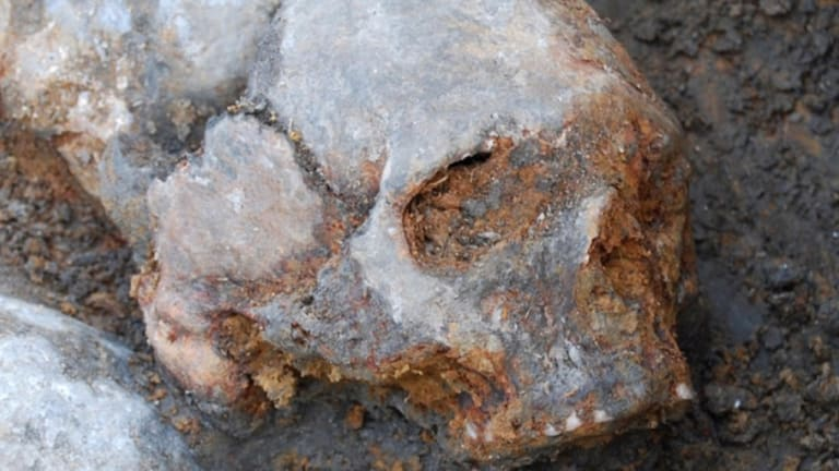 Human Skulls Mounted on Stakes Found at Stone Age Burial Site
