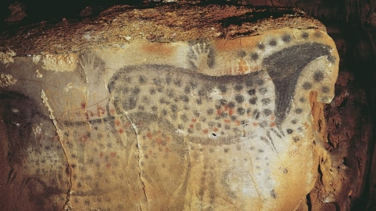 Cave Painters Didn T Dream Up Spotted Horses Study Shows