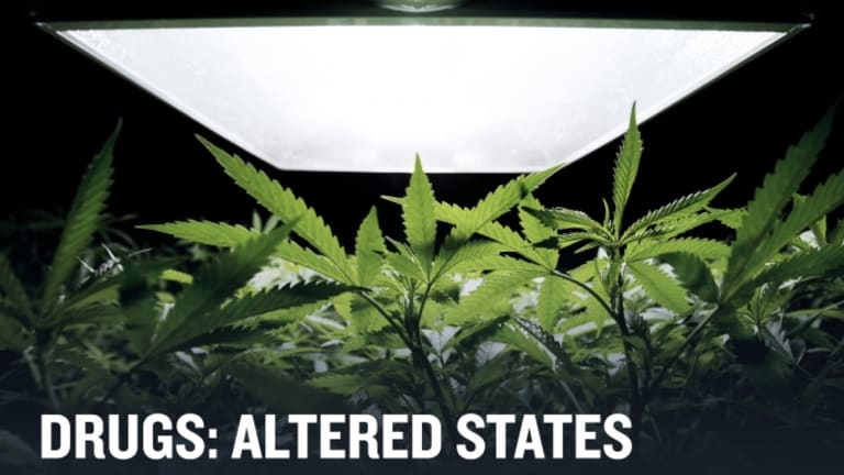 HISTORY Vault: Drugs: Altered States