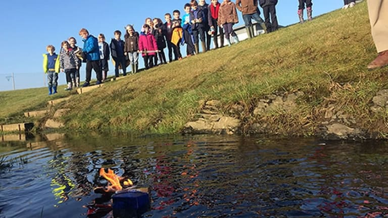 Scottish Schoolchildren Give Goldfish a Grand Viking Funeral