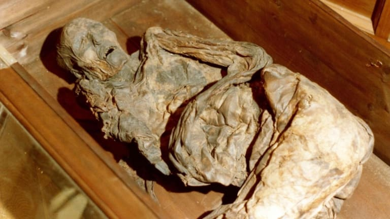 Uncovering the Mysteries of the Bog Bodies
