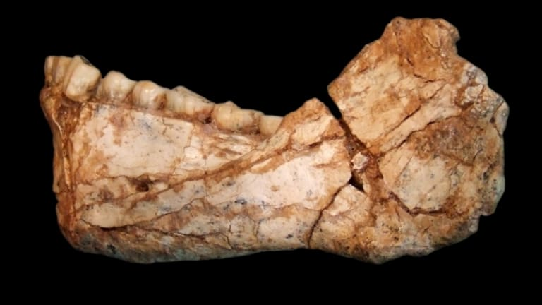 How Homo Sapiens Fossils Found in Morocco May Rewrite the Human Story