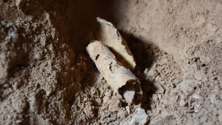 After 60 Years, Archaeologists Find New Dead Sea Scrolls Cave