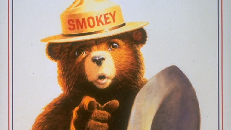 How Fear of a WWII Invasion Gave Rise to Smokey Bear