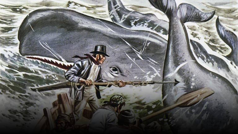 Was There a Real Moby Dick?
