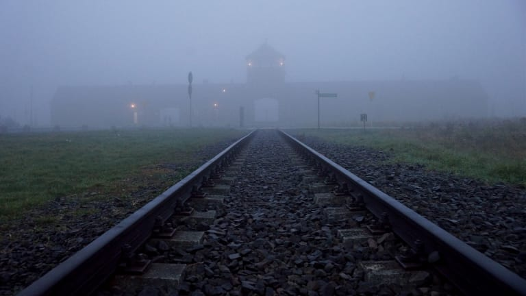 Auschwitz Survivors Recall Harrowing and Heroic Moments From the Death Camps