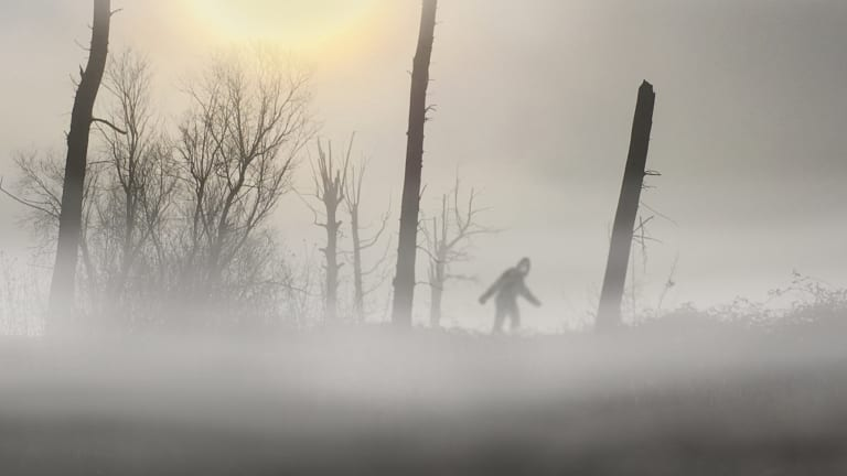 Bigfoot Was Investigated by the FBI. Here's What They Found