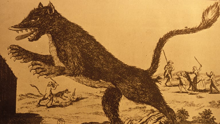 What Was the Beast of Gévaudan?